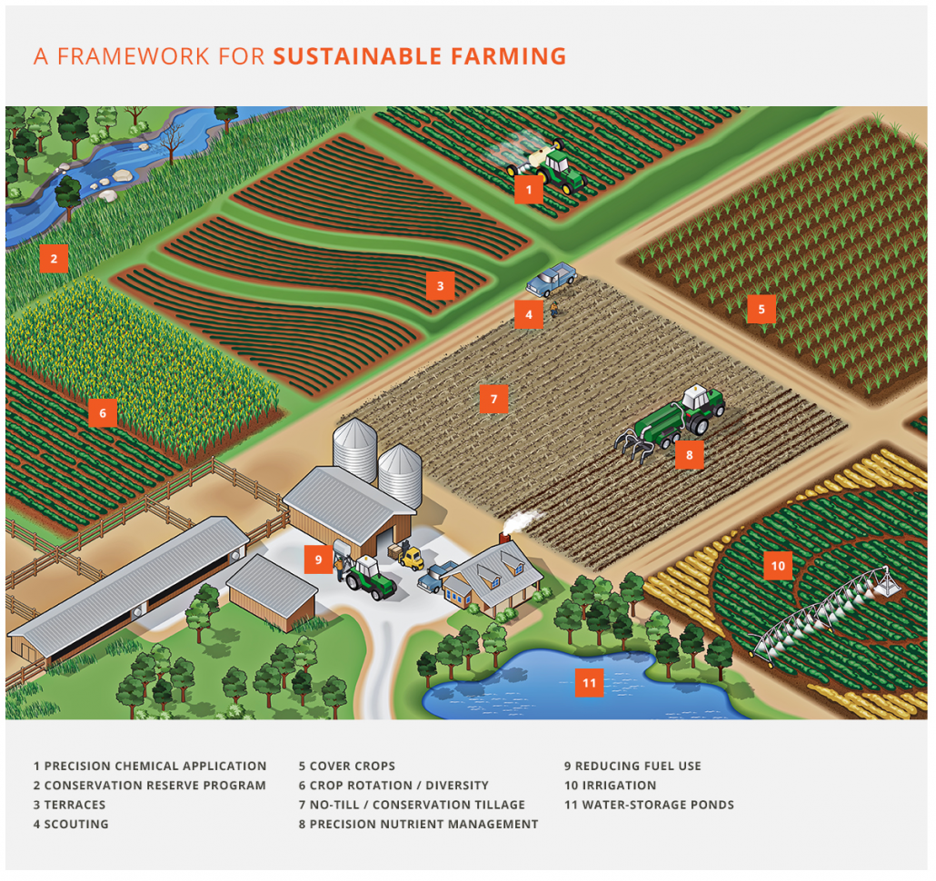 US Soy Farm Infographic